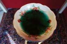 水に溶かしたアルジー(濃い緑色と神秘的な青が優れたアルジー品質の証)